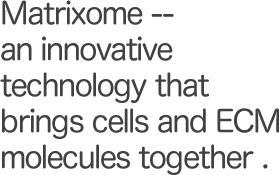 Matrixome -- an innovative technology that brings cells and ECM molecules together.